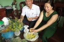 Hướng mới trong đào tạo nghề cho người khiếm thị ở Bắc Ninh