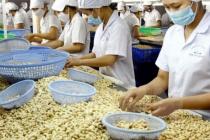 Xuất khẩu hạt điều nhân hướng đến kim ngạch 3,3 tỷ USD