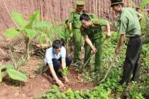 Tuổi trẻ huyện Kim Bôi tri ân các anh hùng, liệt sỹ