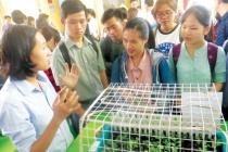 Khởi nghiệp nông nghiệp - nhiều cơ hội cho giới trẻ