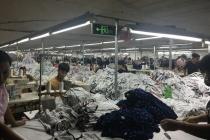 9 tháng đầu năm có gần 30 ngàn lượt khách hàng được Ngân hàng Chính sách xã hội Hà Nội cho vay vốn giải quyết việc làm