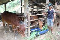 Một số giải pháp trọng điểm về công tác giảm nghèo ở Thái Nguyên
