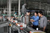 Năm 2017 Ninh Thuận giải quyết việc làm cho người lao động vượt kế hoạch đề ra