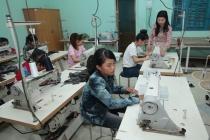Hiệu quả công tác dạy nghề cho lao động nông thôn ở Bình Thuận