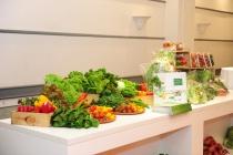 Tập đoàn T&T ra mắt thương hiệu nông sản an toàn T.Vita