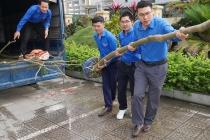 Các chi Đoàn tòa nhà D25 tổ chức giao lưu thân mật nhân dịp kỷ niệm 87 năm ngày thành lập Đoàn TNCS Hồ Chí Minh