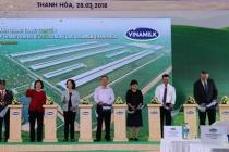 Vinamilk khánh thành trang trại bò sữa công nghệ cao Thanh Hóa