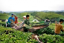 HĐND tỉnh Phú Thọ giám sát thực hiện Nghị quyết 30a tại huyện Tân Sơn