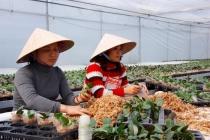 Công tác xã hội tỉnh Quảng Ninh đã đạt được nhiều kết quả xuất sắc