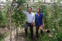 Thừa Thiên Huế: Phấn đấu đưa công tác dạy nghề đáp ứng với nhu cầu thị trường lao động