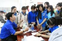 Năm 2017, Kiên Giang giải quyết việc làm cho 38.255 lượt người