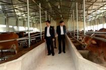Huyện Vị Xuyên với công tác giảm nghèo nhanh, bền vững