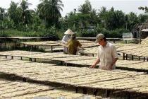 Cà Mau nỗ lực giảm số hộ nghèo vùng dân tộc thiểu số