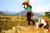 Quảng Ninh: Chú trọng giảm nghèo vùng dân tộc và miền núi