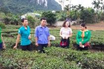 Vùng biên giới Con Cuông nỗ lực thoát nghèo