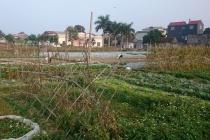 Bắc Ninh: Nguồn vốn chính sách đồng hành cùng bà con xóa đói, giảm nghèo, phát triển kinh tế