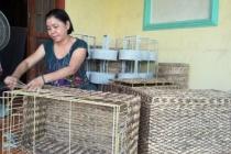 Huyện Chợ Gạo đẩy mạnh công tác giải quyết việc làm