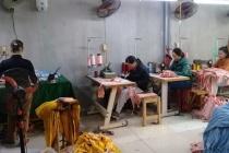 Phường Giang Biên- Quận Long Biên: Hiệu quả từ nguồn vốn vay giúp người dân thoát nghèo