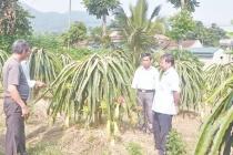Thanh Hóa với những nỗ lực giảm nghèo nhanh và bền vững