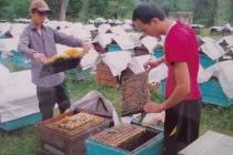 Sơn La vượt mục tiêu giải quyết việc làm cho 23.150 lao động