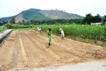 Quảng Ninh: Nhiều kết quả tích cực trong công tác cai nghiện ma túy