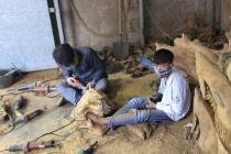 Cần triển khai đồng bộ các giải pháp thúc đẩy, tiến tới xóa bỏ lao động trẻ em