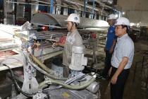 Xử lý vi phạm quy định về hoạt động kiểm định kỹ thuật an toàn lao động