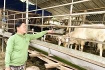 Ninh Thuận: Phát huy hiệu quả nguồn vay giải quyết việc làm