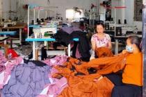 Hà Nội:  Sử dụng hiệu quả nguồn vốn vay góp phần giải quyết việc làm cho phụ nữ