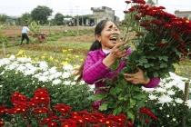 Phát huy hiệu quả đào tạo nghề cho lao động nông thôn ở Nam Định
