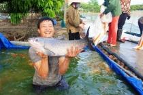 Nam Định: Tích cực hỗ trợ, tư vấn và dạy nghề cho nông dân