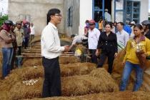 Nam Định đẩy mạnh đào tạo nghề nông nghiệp cho lao động nông thôn