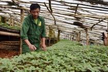 Hợp tác để đưa dược liệu quí của Việt Nam đến đông đảo người tiêu dùng
