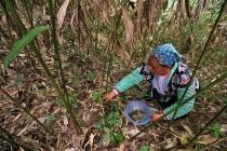 Vietnam achieves poverty reduction goals