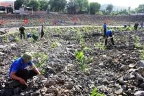 Công ty 397 đảm bảo an toàn, vệ sinh lao động gắn với bảo vệ môi trường