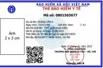 BHXH Việt Nam: Cấp thẻ BHYT mẫu mới từ ngày 1/4/2020