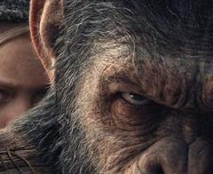 The Apes – Loạt phim bom tấn có kỹ xảo từng nhiều lần đề cử Oscar