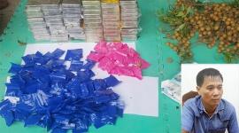 Mang 59 bánh heroin cùng 36.000 viên ma túy lên xe khách