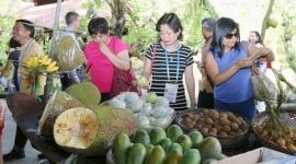 Lãng phí lương thực gây thất thoát 750 tỷ USD trên toàn cầu
