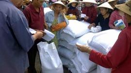 Gần 800.000 người dân nghèo đã được nhận gạo hỗ trợ Tết