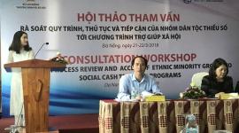 Rà soát quy trình, thủ tục triển khai chính sách trợ giúp xã hội và tiếp cận đối với nhóm dân tộc thiểu số