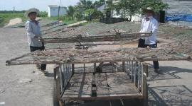 """Chờ EU gỡ """"thẻ vàng"""" cho hải sản Việt Nam"""