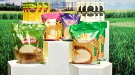 Vinaseed kỷ niệm 50 năm thành lập và ra mắt Bộ nhận diện thương hiệu mới