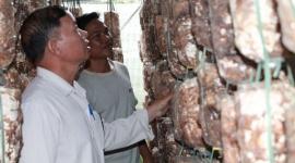 """Xã Dray Sáp """"Điểm sáng trong công tác Đào tạo nghề cho lao động nông thôn"""""""