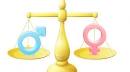 Bình đẳng giới: Còn nhiều nhận thức sai lầm  - Kỳ 1: Bất Bình đẳng giới gây bạo lực gia đình