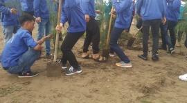 Tổng cục Giáo dục nghề nghiệp phát động Tết trồng cây Xuân Kỷ Hợi 2019