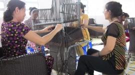 Cần Thơ: Năm 2019 đào tạo nghề cho 5.520 lao động nông thôn