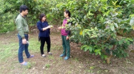 Quảng Ninh: Đưa các xã ra khỏi danh sách đặc biệt khó khăn