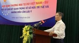 Hội nghị Hiệp định Thương mại tự do giữa Việt Nam và Liên minh châu Âu – Các cam kết quan trọng về sở hữu trí tuệ và những điều cần lưu ý