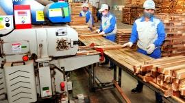 VietnamWood 2019: Cơ hội để các doanh nghiệp giao lưu, học hỏi kinh nghiệm nâng cao năng suất lao động, chất lượng sản phẩm và quản lý nguồn nhân lực hiệu quả